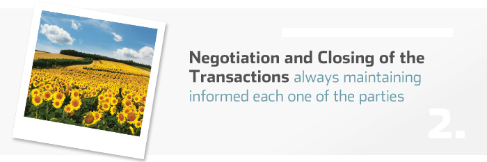 Negotiation and Closing of the Transactions